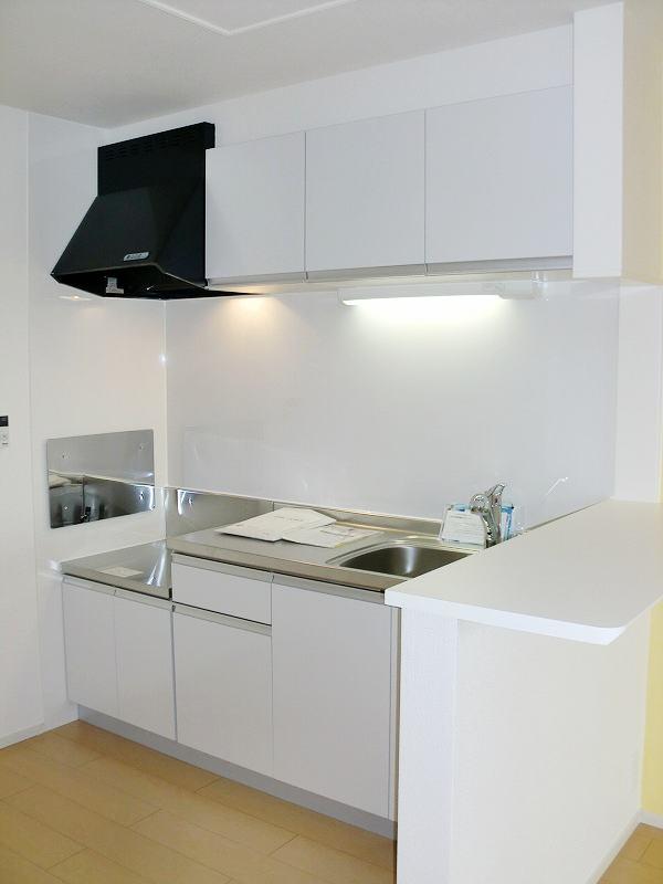 サンクメゾンTA 02030号室のキッチン