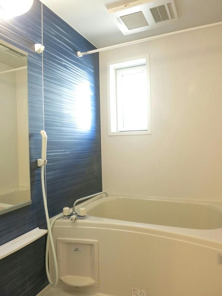 ルミナーレⅠ 02030号室の風呂
