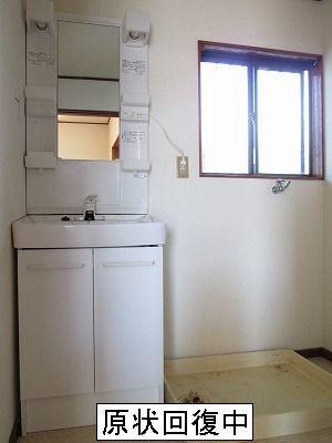 エクセル山本 02010号室の洗面所
