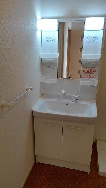 カーサ・アルマーレⅡ 01040号室の洗面所