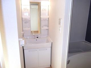 ティン・グローブⅥ 01020号室の洗面所