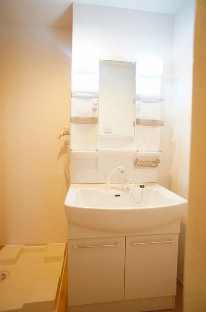 フォレスト パーク 01020号室の洗面所