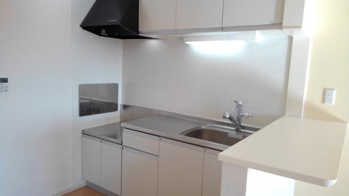 メルティング・ポット羽生 02050号室のキッチン
