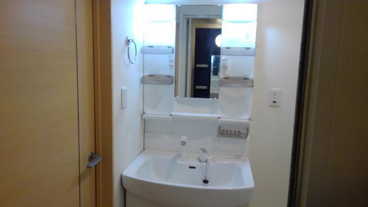 メルティング・ポット羽生 02050号室の洗面所