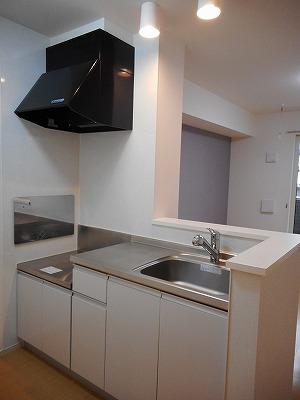 インフィールド青毛 01020号室のキッチン
