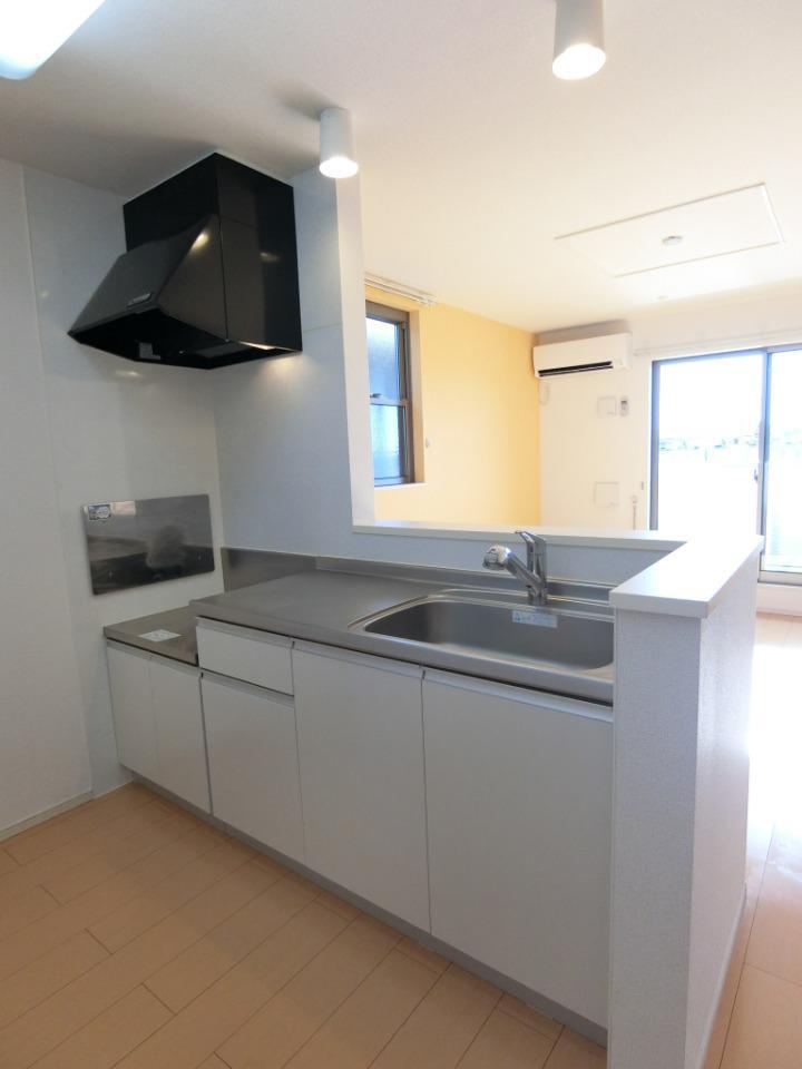 サウスヴァレーⅢ 02030号室のキッチン