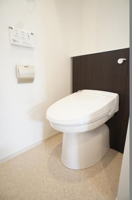 エクセレント グローブ Ⅱ 03020号室のトイレ