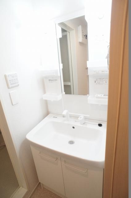 エターナル南与野 弐番館 01010号室の洗面所