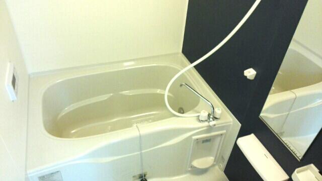 ルルディ フォティア 02010号室の風呂