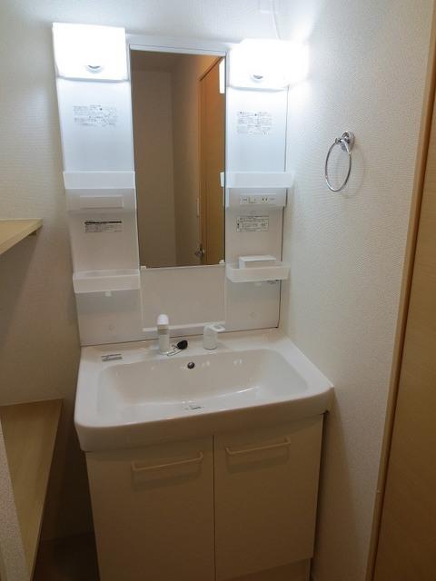 カーサ フェリジータ 02020号室の洗面所