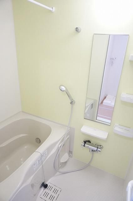 ラ・ルーチェ 02020号室の風呂