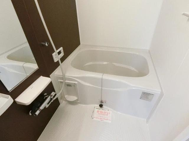 サンリット青柳D 01030号室の風呂