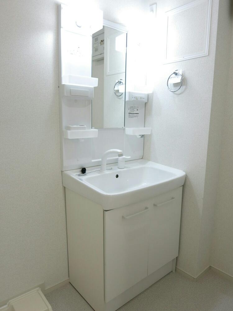 アップル 02040号室の洗面所