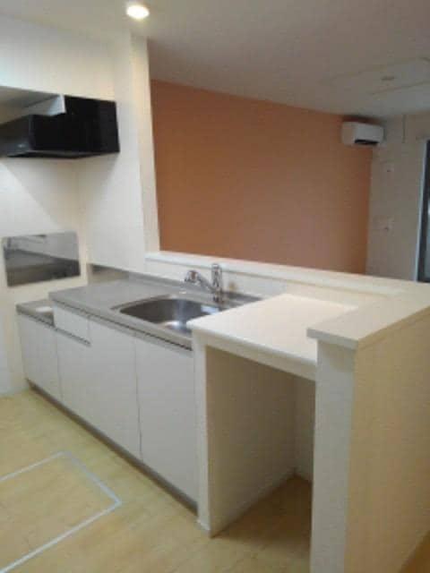 スター ライトⅡ 01040号室のキッチン