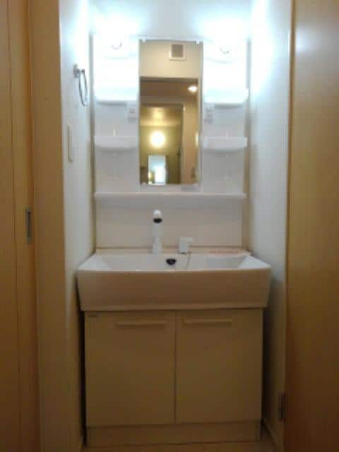 スター ライトⅡ 01040号室の洗面所