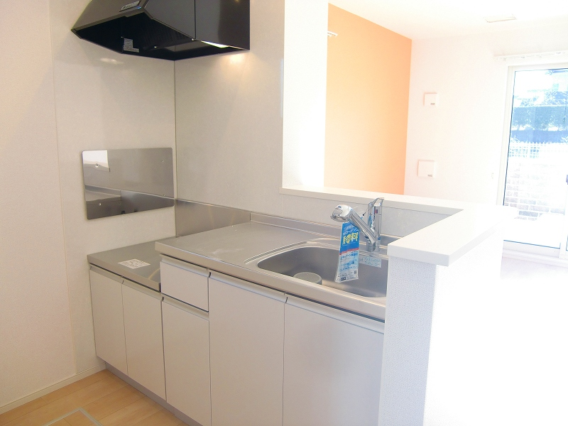 ダンデライオン 01010号室のキッチン