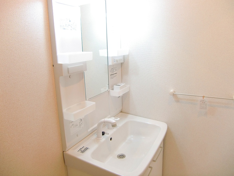 ダンデライオン 01010号室の洗面所