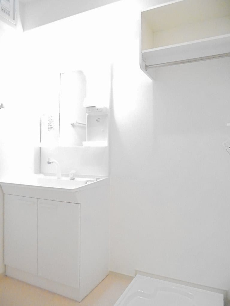 ピースフルA 01030号室の洗面所