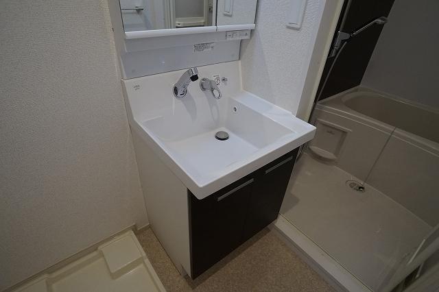 サニー・レジデンス 03030号室の洗面所