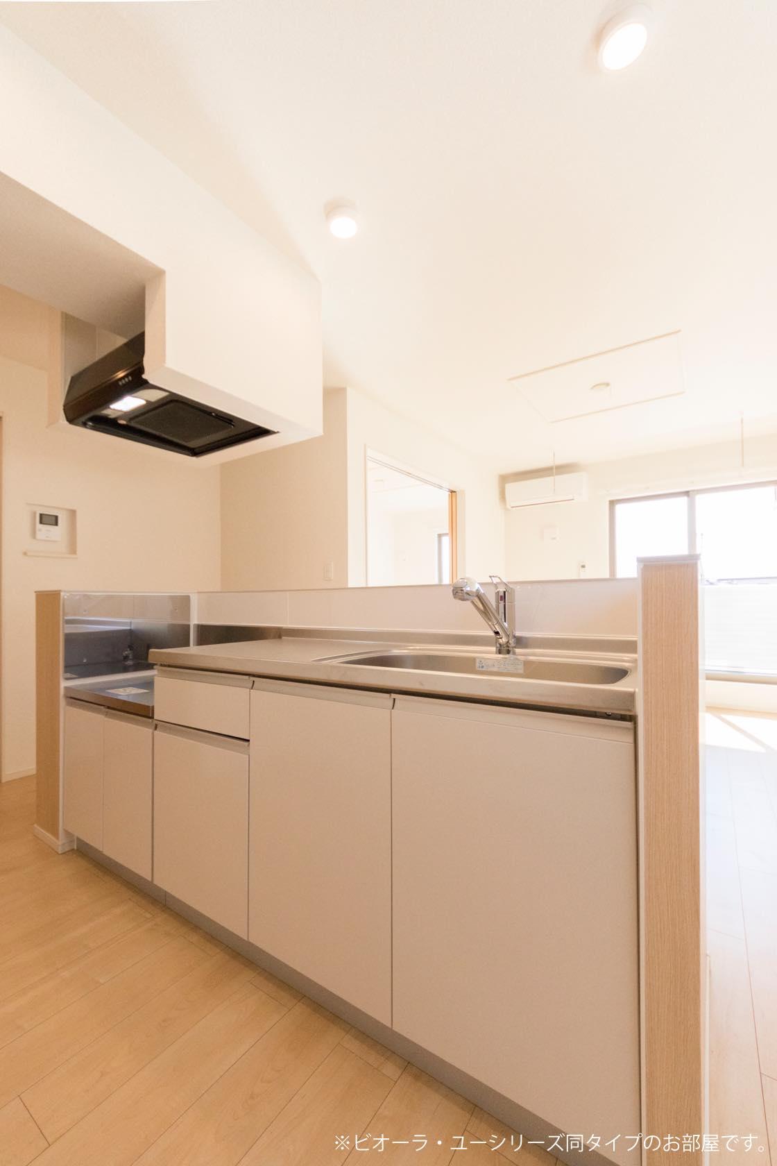 グランデ リーリオ 02010号室のキッチン