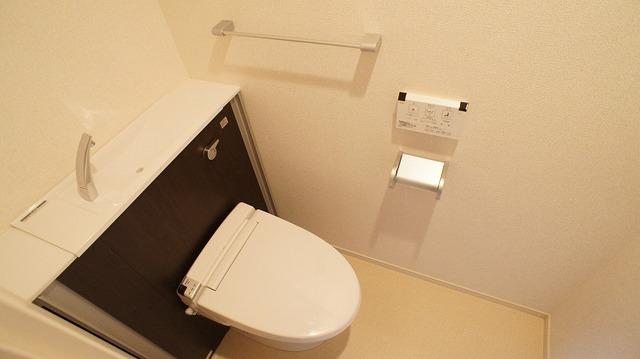 あかやま参番館 02080号室のトイレ