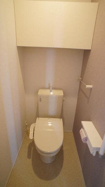 グランベルテⅤ 03010号室のトイレ