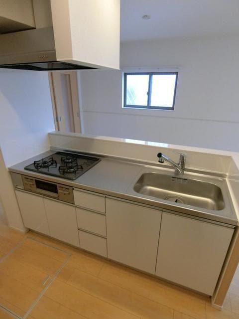カーサ・エスクランⅡ 01030号室のキッチン