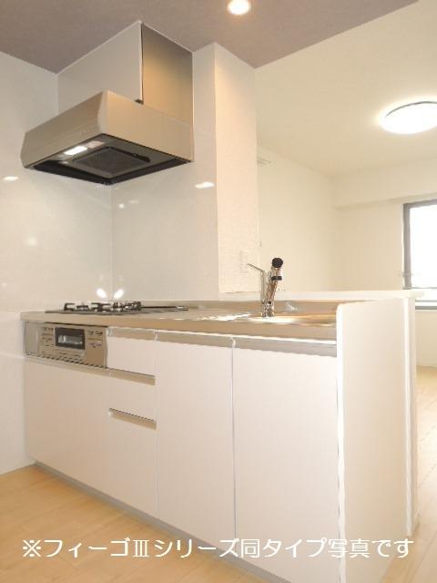 ブリリアント ガーデン 02010号室のキッチン