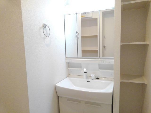 ローリン 02010号室の洗面所