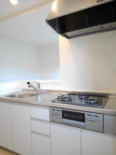 メゾン・ラフレシール B 02020号室のキッチン