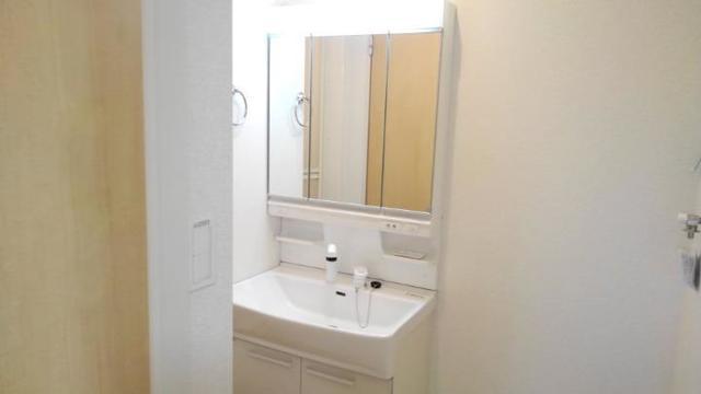 ノイ グランツ 01030号室の洗面所