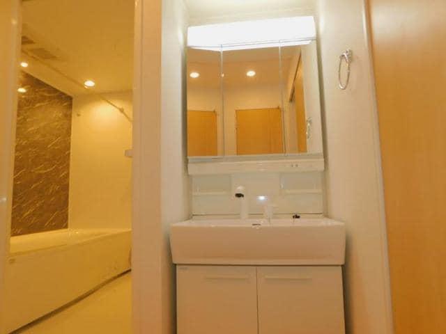 ラディーナB 01020号室の洗面所