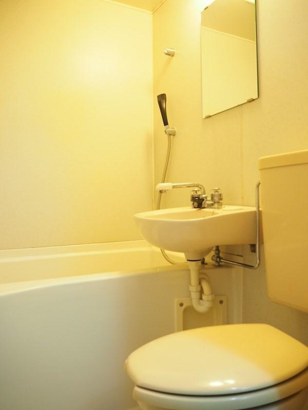 ルーブル池尻大橋 308号室のトイレ