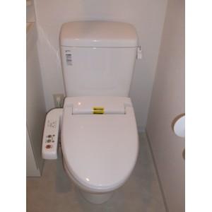 アトラスカーロ浦和常盤弐番館 202号室のトイレ