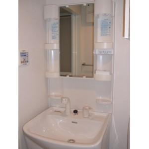 アトラスカーロ浦和常盤弐番館 202号室の洗面所