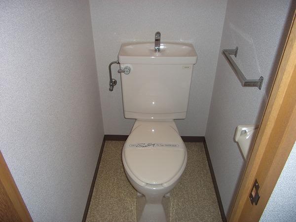 リブルHANASEN 305号室のトイレ