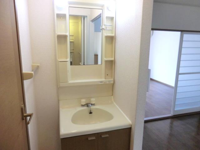 ソレイユ下落合 205号室の洗面所