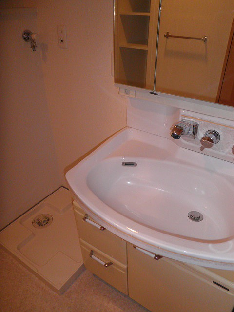 ロイヤルヒルズ浦和 105号室の洗面所