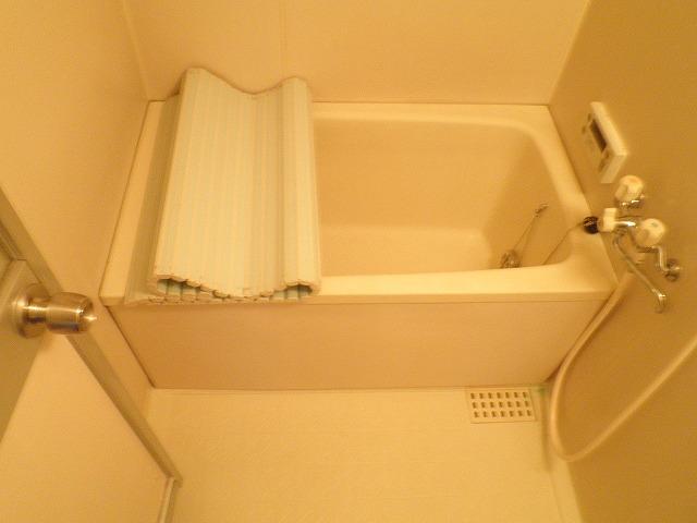 ドミール・ヤマノウチの風呂