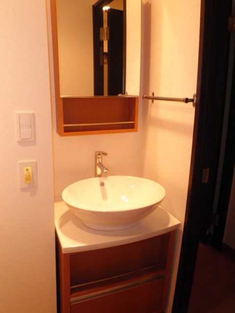 リブリ・ジラソーレ 203号室の洗面所