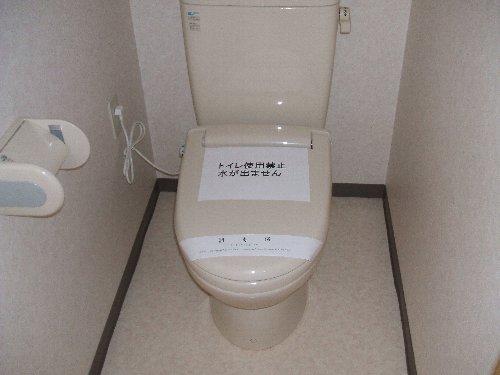 メゾンドエフ 304号室のトイレ