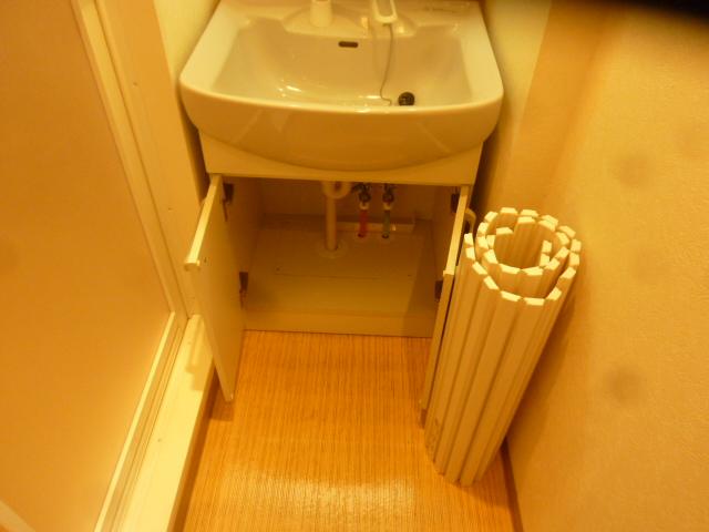 カーサアルマーレ 203号室の洗面所