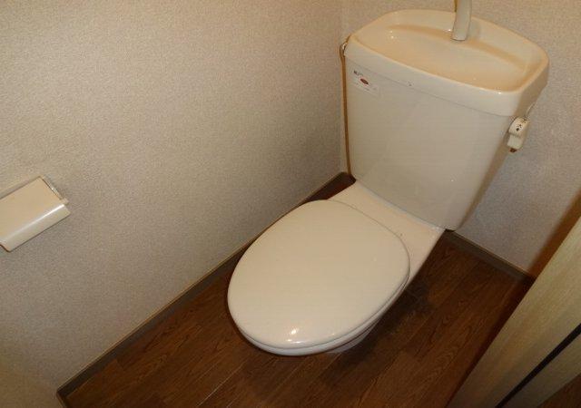 サンダイヤコーポ 202号室のトイレ