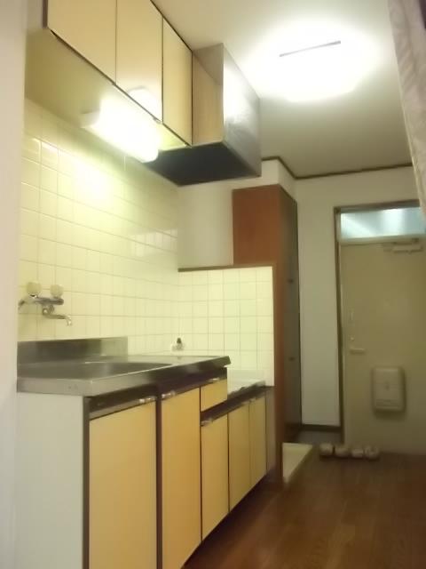 グランドールクサナギB 103号室のキッチン