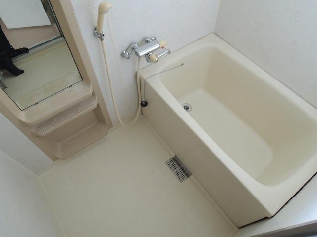 グランディール蜆塚B 205号室の風呂