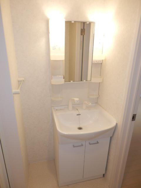 クレフラスト高丘A 101号室の洗面所