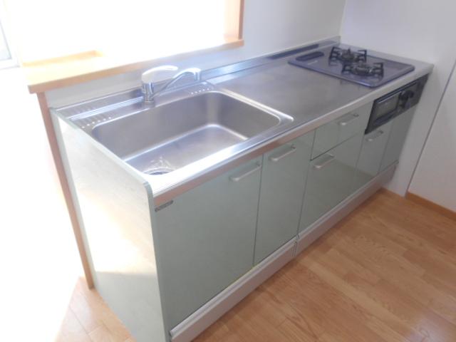 コートラフィーネD 101号室のキッチン