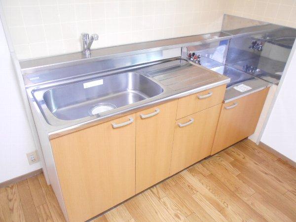 宗田ビレッジ 101号室のキッチン