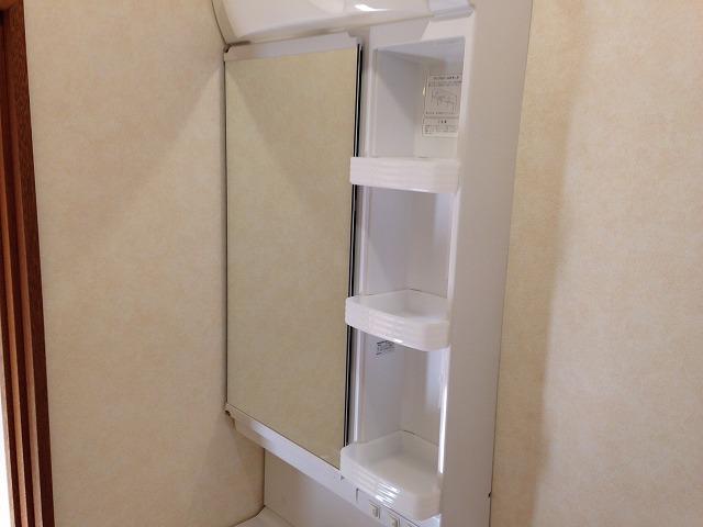 エクセルタナカ 201号室の洗面所