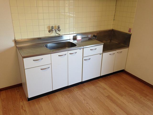エクセルタナカ 201号室のキッチン